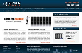 Web Hosting Company Design Concept
