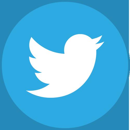 Janus Design @ Twitter